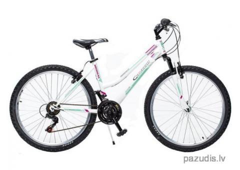 Nozagts velosipēds ! .....