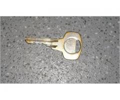Atrasta atslēga