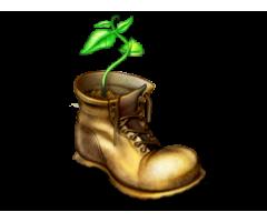 Atrasti jauni apavi